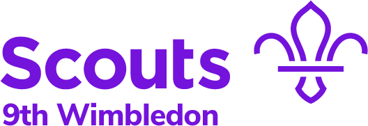 9th Wimbledon Scout Group Website